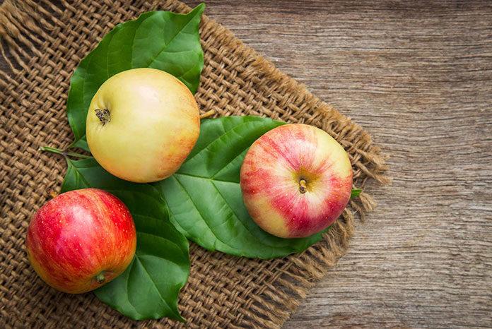 Wygodny i bezpieczny transport owoców